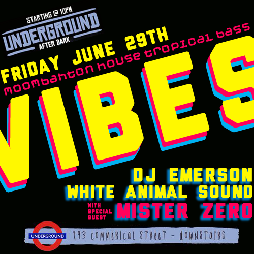 Vibes with White Animal Sound and special guest Mister Zero